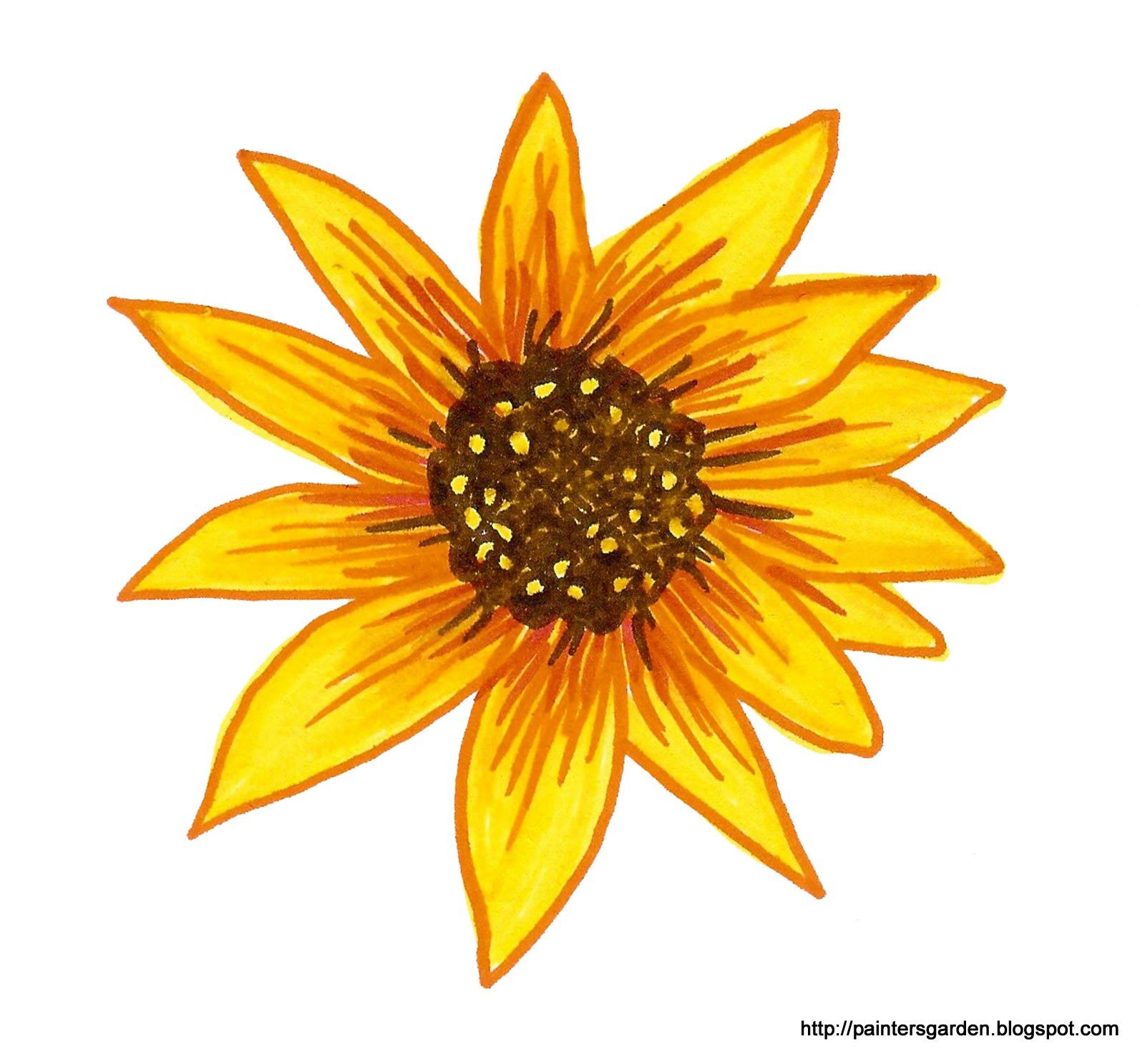 Paintersgarden: Drawing sunflowers in marker