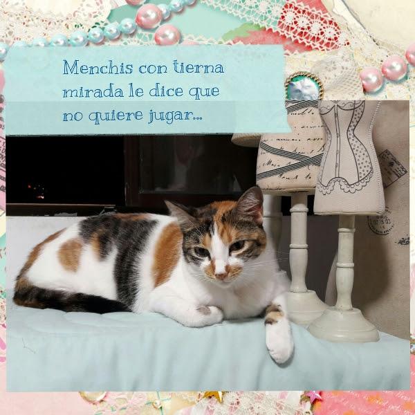 Gatos, Menchis