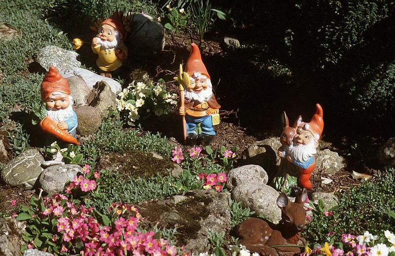 Gnome In Garden: Studio HART VOOR TAROT: Boeddha's En Tuinkabouters