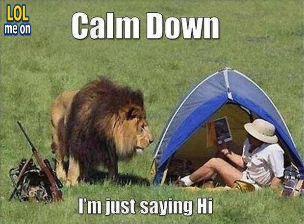 """funny animal picture shows a lion want to say Hi from """"LOL me on"""""""
