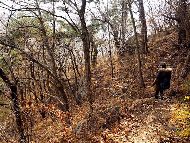 Descent through the autumn forest down Geumjeongsan Mountain, Busan, South Korea