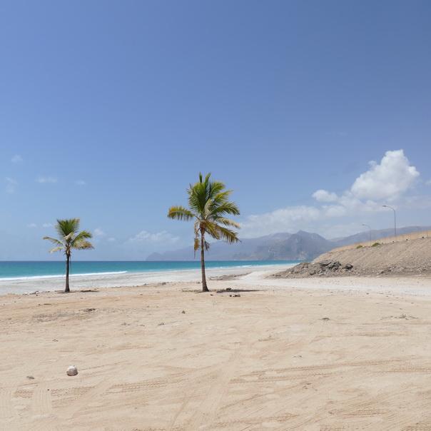 Mughsail, Beach, Strand, Salalah, Salala, Oman, Palmen, Meer