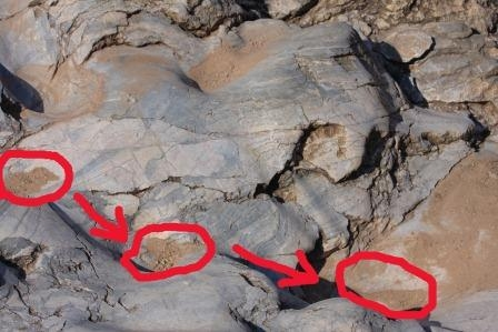 Dinosaur Footprints at Mount Etjo, Namibia