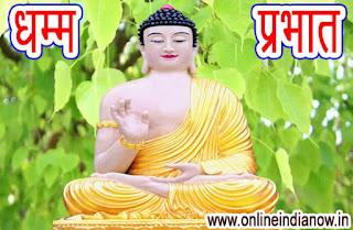 धम्म प्रभात- भगवान बुद्ध ने जिस बोधि वृक्ष के नीचे ज्ञान प्राप्त किया -BUDDHA PHOTO -DHAMM PHOTO HD - ONLINE INDIA NOW