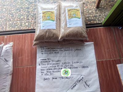 Benih pesana    ENDANG SISWATI Grobogan, Jateng.   (Sebelum Packing)
