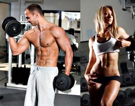 -masa muscular definición sin hacer cardio