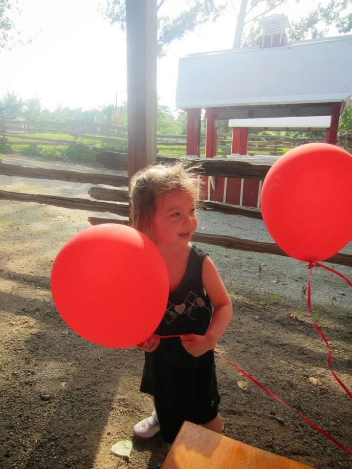 toddler with red balloons, chudleighs apple orchard and farm Milton