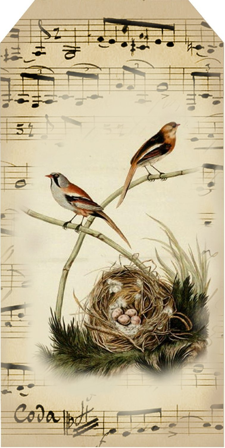 free clipart of vintage birds - photo #34