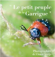 http://amisdailhon.blogspot.fr/2006/05/le-petit-peuple-de-la-garrigue-salle-de.html
