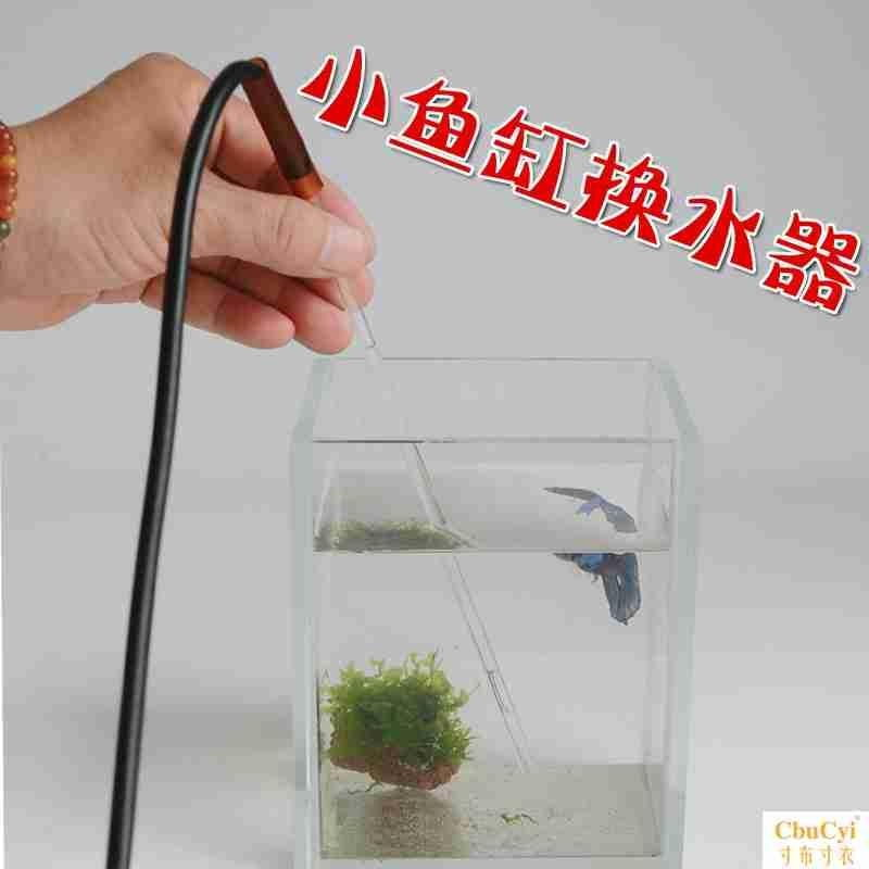 Image How to Find Betta Fish Bowl with Plant