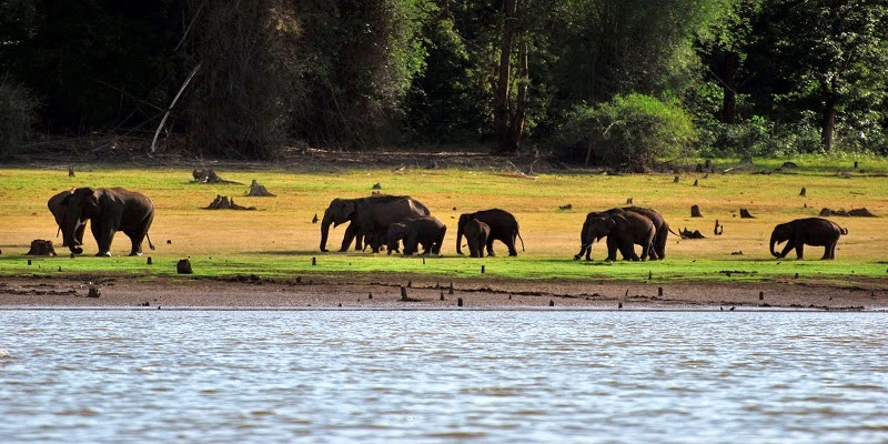 Kabini - Weekend Getaways from Bangalore