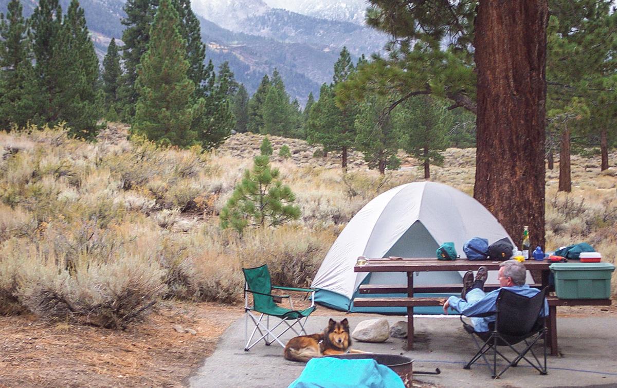 wcs: California camping [2]