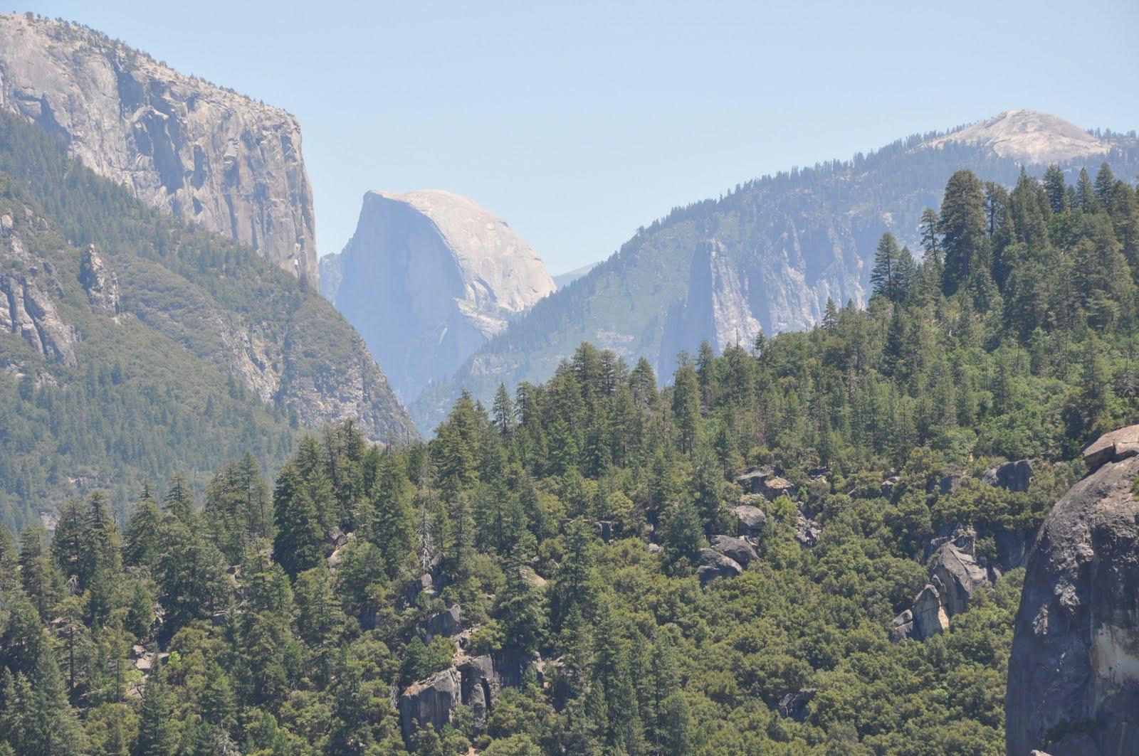 Murderous Musings: Ah, Yosemite
