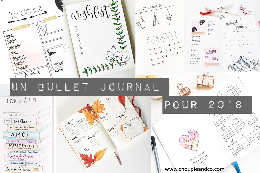 http://www.choupieandco.com/2018/01/un-bullet-journal-pour-2018.html