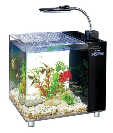 Small Glass Betta Aquariums Fish Tank With Light Art
