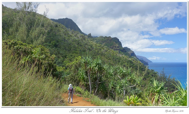 Kalalau Trail: On the Wings