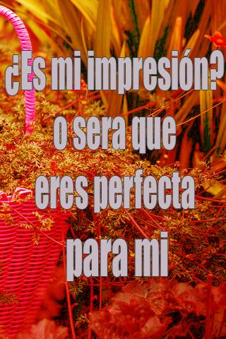 ¿Es mi impresión? o sera que eres perfecta para mi