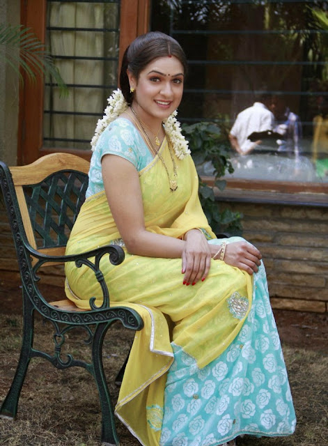 Actress Aditi Agarwal Yellow Saree Photos