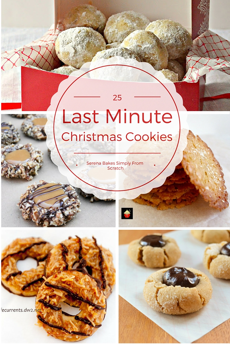 25 Last Minute Christmas Cookie Ideas perfect for Santa. serenabakessimplyfromscratch.com