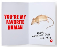 Valentines Day card You're My Favorite Human dead mouse Love Kitty paw print love gift