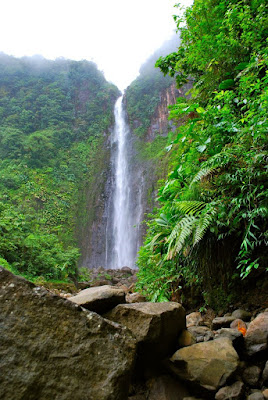 Chute du carbet au Parc National de Guadeloupe