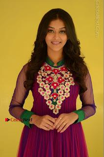 Actress Pooja Jhaveri Latest Stills in Purple Salwar Kameezt at Dwaraka Success Meet  0045.JPG