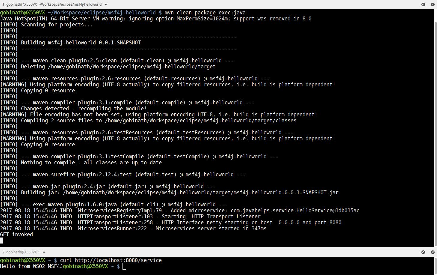 Microservices Framework for Java (MSF4J) - HelloWorld!