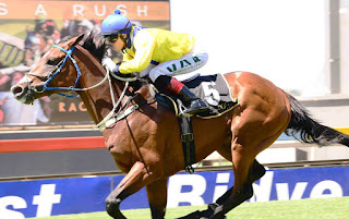 Al Sahem - Trained by Sean Tarry - Durban July 2017 - Horse Racing - South Africa
