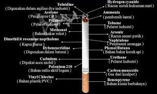 Semakin banyaknya jenis atau macam produk rokok yang beredar dari aneka macam label menciptakan  Bahaya Rokok Bagi Kesehatan
