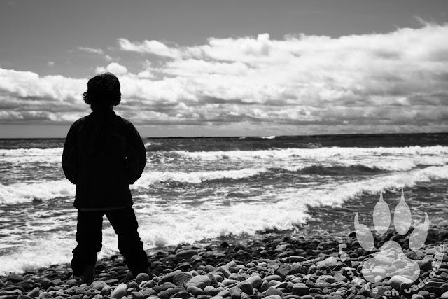Suede-Oland-Bodakusten-ostra-enfant-mer