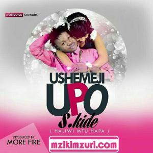New Audio | S Kide-Haliwi Mtu Hapa(Ushemeji upo) - Mapambano
