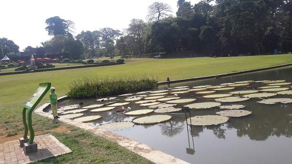 Kebun Raya Bogor Objek Wisata Alam