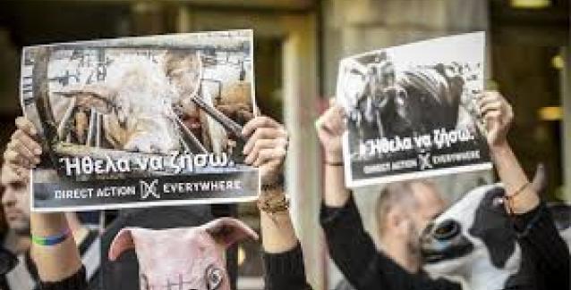 «Φιλόζωοι» ακτιβιστές στην Βαρβάκειο ποιος τους έστειλε εκεί άραγε?