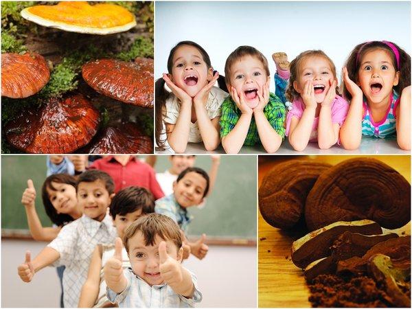 dùng nấm linh chi cho trẻ em