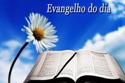 Resultado de imagem para evangelho do dia