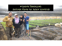 #CeritaTravelling: Serunya Piknik ke Kebun Sunpride