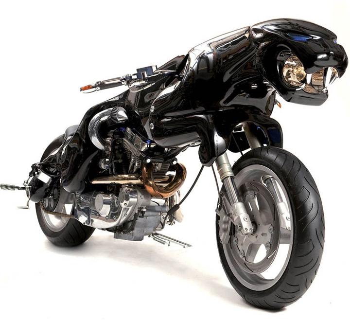 fantastik motorsiklet resimleri