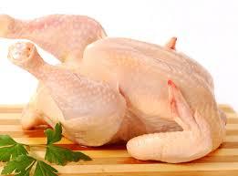 Potensi cemaran mikrobiologi daging ayam