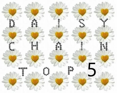 Top 5 at Daisy Chain Challenges