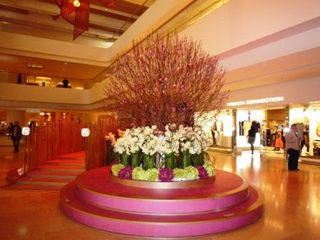Hong Kong Travel Blog: Chinese New Year Photos in Hong Kong