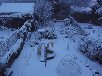 Snow covered garden Green Fingered Blog