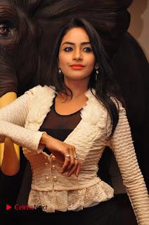 Actress Pooja Sree  Pictures at Khaan Saab Restuarent Launch in Gachibowli   0097.JPG