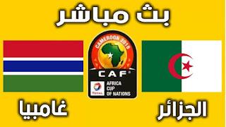 متابعة ماتش الجزائر غامبيا مباشر
