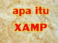 Apa itu XAMPP dan Pengertian Xampp menurut para ahli
