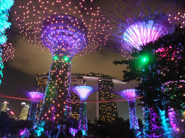 Singapore Gardens by the Bay Supertrees at Night