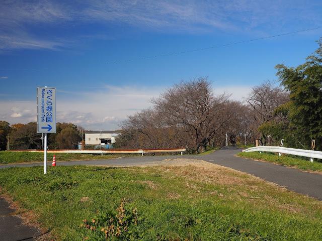 荒川自転車道 さくら堤公園