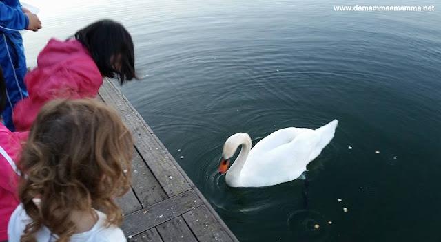 bambini e natura gita al fiume Adda