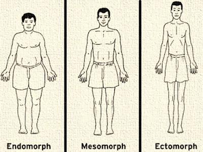identifying over-sensitive ectomorph