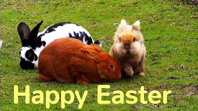 Happy Easter 2018 Images