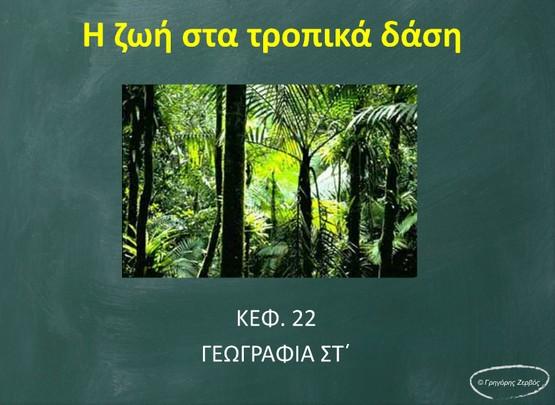 http://anoixtosxoleio.weebly.com/uploads/8/4/5/6/8456554/tropika_dasi.swf